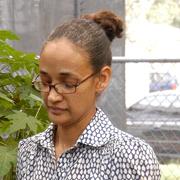 Prof. Paula Tennant