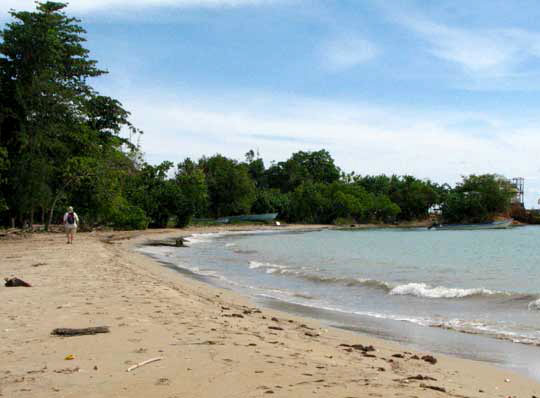 Lyssons Beach Estate Management Department The