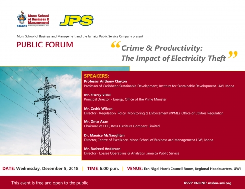 Crime & Productivity: The Impact of Electricity Theft