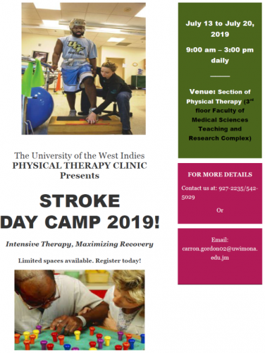 Physical Therapy Clinic | Stroke Day Camp 2019