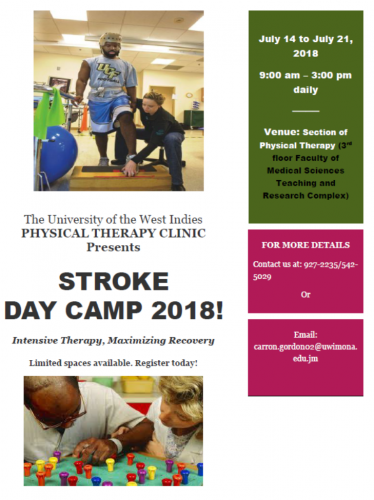 Physical Therapy Clinic Stroke Day Camp
