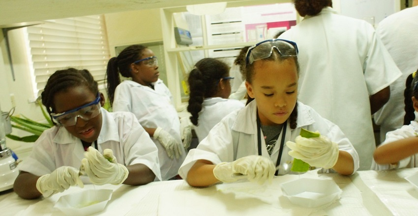 Mini Scientist Outreach Programme for Children